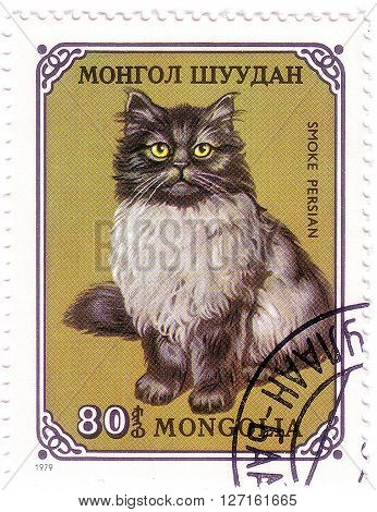Mongolia - Circa 1979: A Stamp Printed In The Mongolia, Shows The Cat, Circa 1979