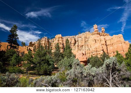 Dixie National Forest - Red Canyon, Utah