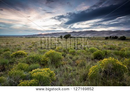 Great Sand Dunes National Park At Sunset
