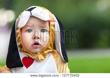 Little funny baby wearing puppy suit on green background