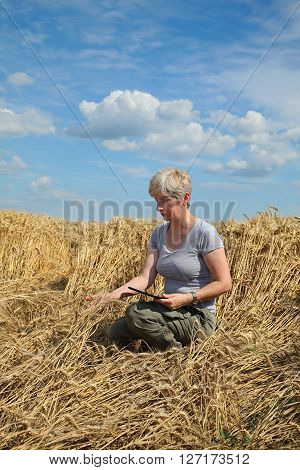 Agriculture, Desperate Farmer In Damaged Wheat Field
