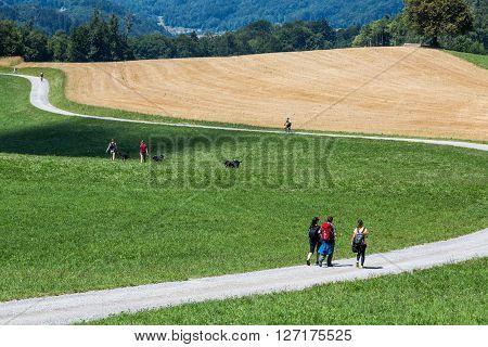 Zurich, Switzerland - August 15, 2015: Views of people walking on Uetliberg on a sunday. Uetliberg is a mountain near Zurich Switzerland