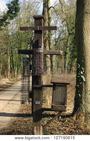 A variety of different bird feeders on a wooden post in woodland. Some of the bird feeders are empty. Background of trees and concrete track.