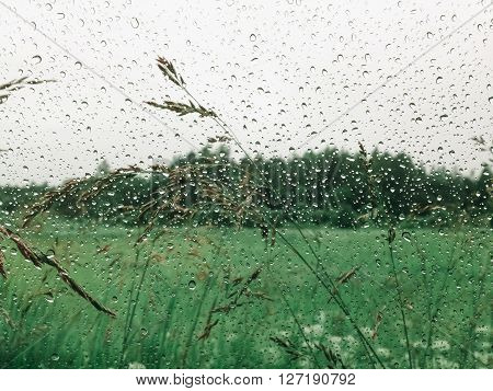 Raindrops against a beautiful green landscape. Outdoors photo.