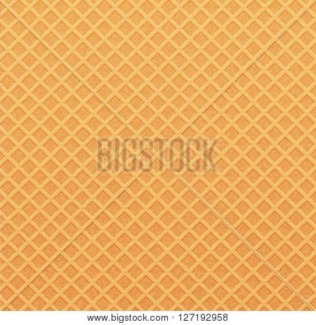 background (texture wafer)