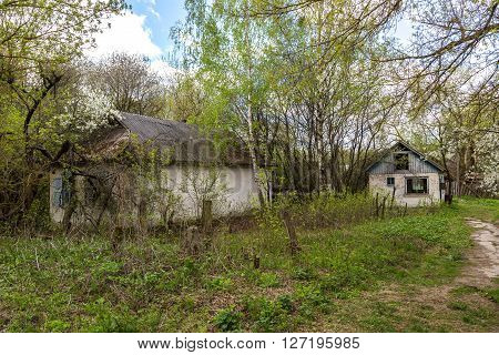 Abandoned Village In Chernobyl
