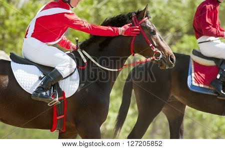 jokeys on a racing horses before the start