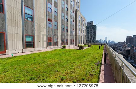 Terrace With Green Grass Of Shutterstock Offices.