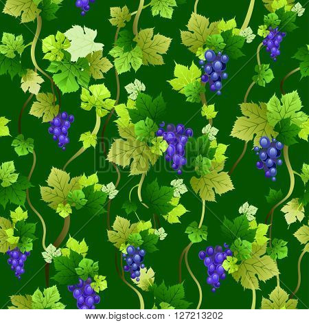 Blue grapes seamless pattern on dark green background. The natural design banner,ticket, leaflet and so on. Place for text. Isolated elements.
