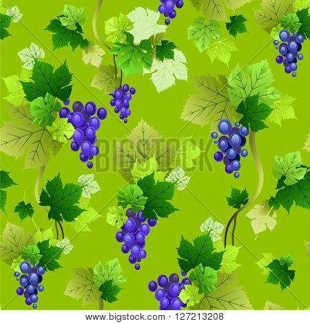 Grapes pattern on green background. The natural design banner, ticket, leaflet and so on.