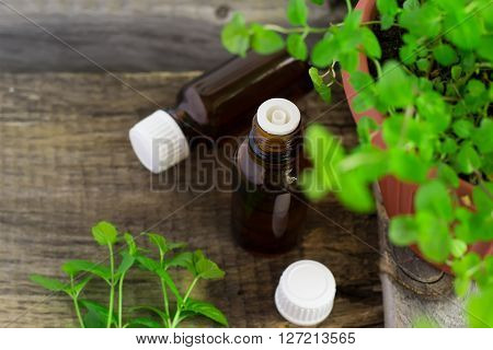 Essential oil of peppermint in a small bottle with fresh mint selective focus tinted