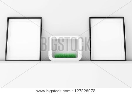 Blank Picture Frames with Grass in White Ceramics Planter on the White Wall extreme closeup. 3d Rendering