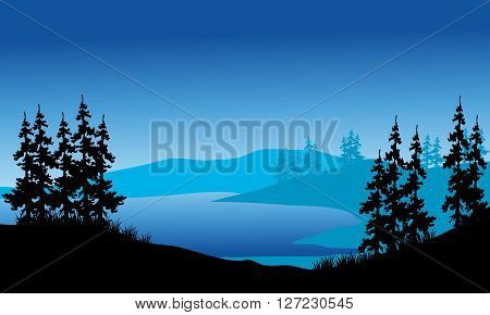 Silhouette of spruce on the backgrounds blue in the hills