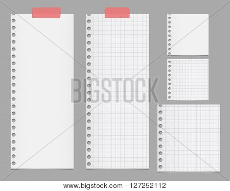 Pieces of torn white squared notebook paper are stuck on gray background.