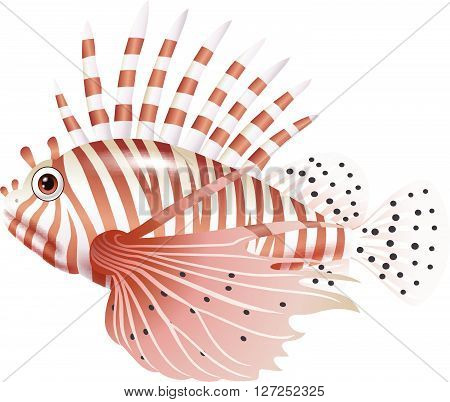 Vector illustration of Cartoon scorpion fish isolated on white background
