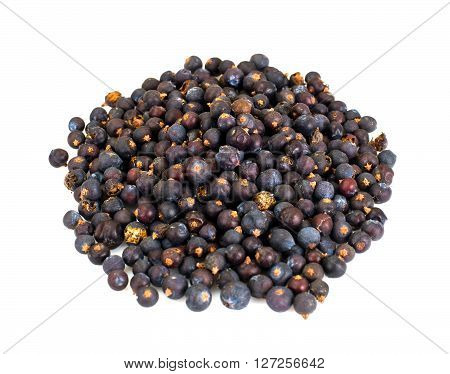 Dried Fruits of Juniper, Seasoning Isolated on White Background Studio Photo