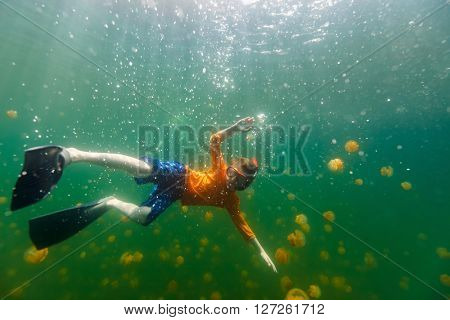 Underwater photo of tourist child snorkeling with endemic stingless jellyfish in lake at Palau. Snorkeling in Jellyfish Lake is a popular activity for tourists to Palau.