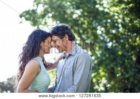 Smiling happy couple standing against tree at park