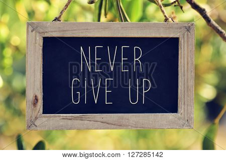 closeup of a wooden-framed chalkboard with the text never give up hanging on the branch of a tree