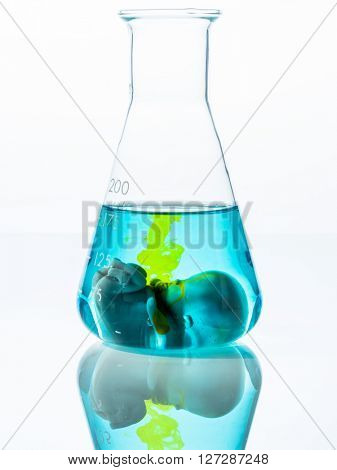 symbolfoto embryo, genetic engineering and abortion. schangersch
