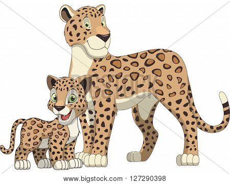 Vector illustration adult leopard and cub leopard white background