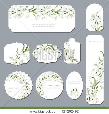 Collection with different floral paper labels for  announcements. Round,square,rectangular, different shapes.White primrose flowers. Snowdrops.