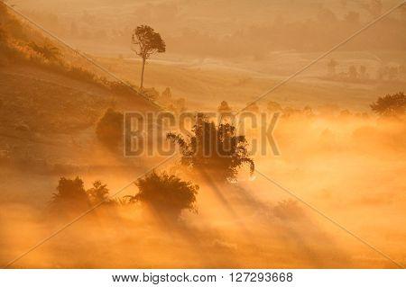 Misty Morning Sunrise In Khao Takhian Ngo View Point At Khao-kho Phetchabun,thailand