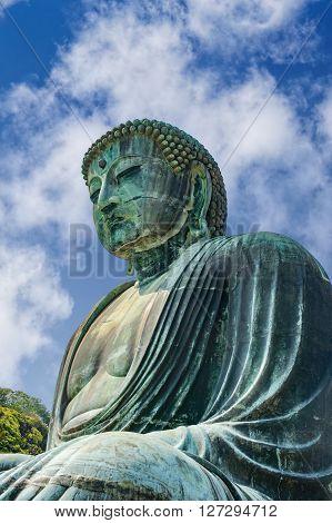 Great Buddha statue on the grounds of Kotokuin Temple in Kamakura Japan