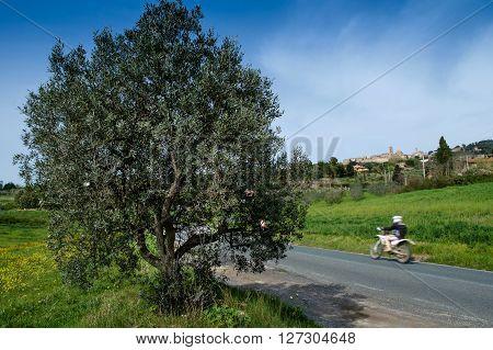 Italy, Tuscany, Volterra, Landscape