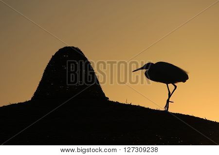 Heron silhouette stands gracefully on the straw roof against the dawn sky