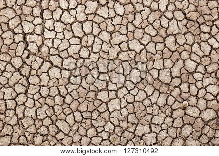 Dry and cracked ground of the road going through the Amboseli desert (aka