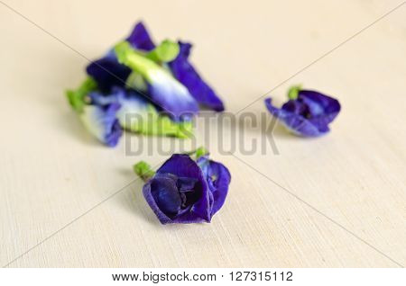 Butterfly pea or Blue pea flowers (Science name Clitoria ternatea L. other names are Orchid Station Orchid travel) isolated on wooden background