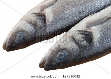 raw seabass fish on the wooden table