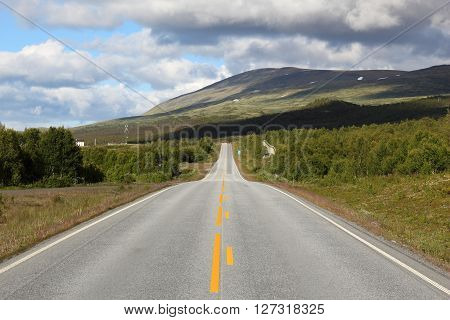 Norway - Dovrefjell