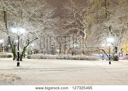 Snow On Trees In Riga Park By Night