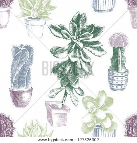Hand drawn seamless pattern with cactuses and succulents