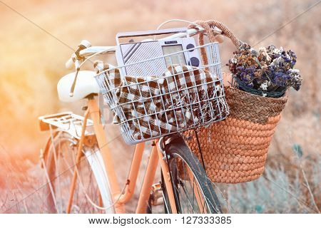 Bicycle with basket of flowers in meadow. Retro style