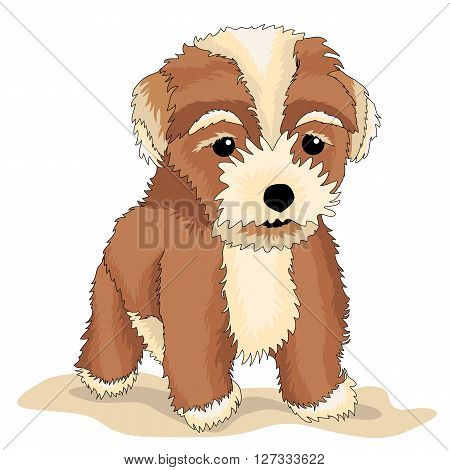 Puppy sad realistic vector illustration brown shaggy