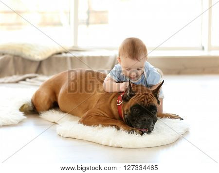 Little baby boy with boxer dog resting on the floor at home