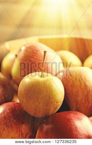 Juicy apples, close-up. Retro style