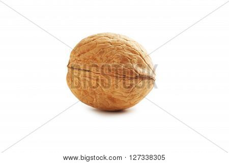 Walnut Isolated On A White Background