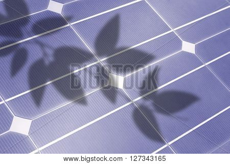 solar cell, detail with shadows of leaves