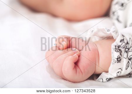Newborn Infant Baby's Hand