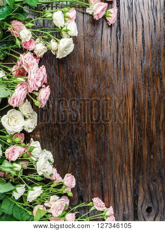 Delicate fresh roses on the wooden background.