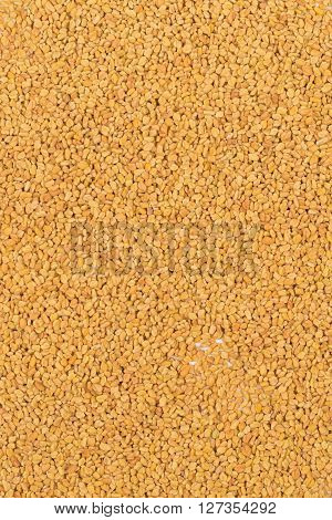 Frame filling top view of whole unprocessed fenugreek (Trigonella foenum-graecumcumin) seeds