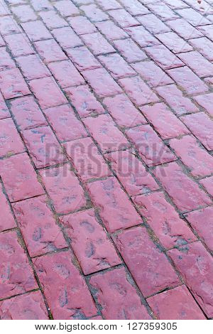 Wet Red Pink Cobblestone Path