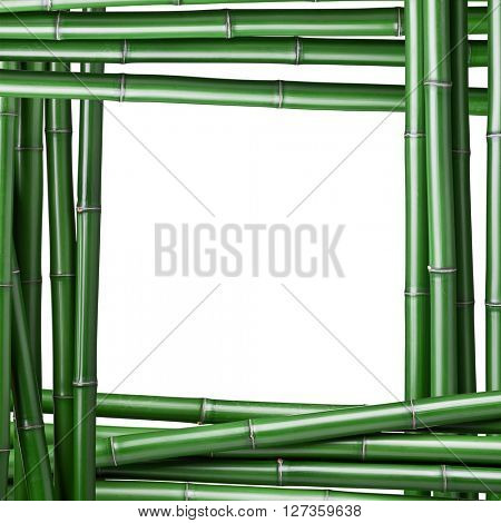 detail of real bamboo frame