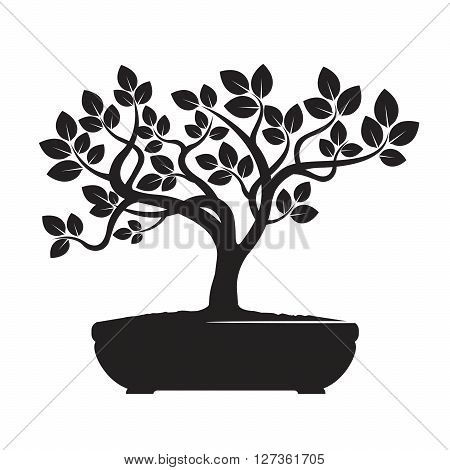 Black Bonsai Tree. Vector Illustration and Graphic Element..