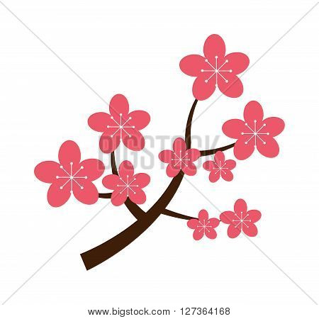 Realistic sakura japan cherry branch with blooming flowers vector illustration. Sakura japan cherry flower and pink sakura japan cherry floral. Traditional sakura japan blooming tree design.