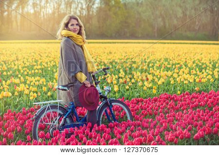 Female in a coat and hat riding bike through tulip fields in the south-west of the Netherlands. Shot at sunset.